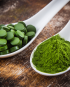 Chlorella Powder & Tablets